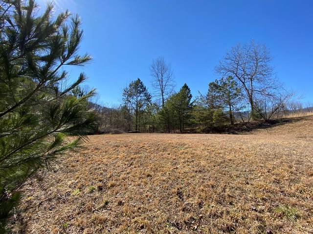 000 Theron Mccray, HAYESVILLE, NC 28904 (MLS #137233) :: Old Town Brokers