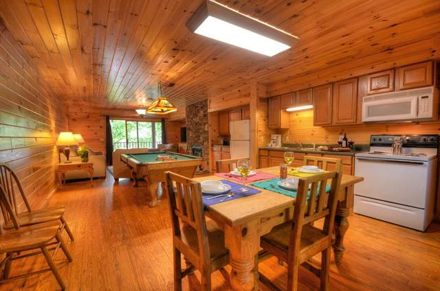 57 Observation Point Rd, BRYSON CITY, NC 28713 (MLS #137521) :: Old Town Brokers