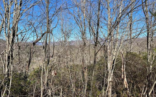 Lot 19 Soapstone, HIAWASSEE, GA 30546 (MLS #137546) :: Old Town Brokers