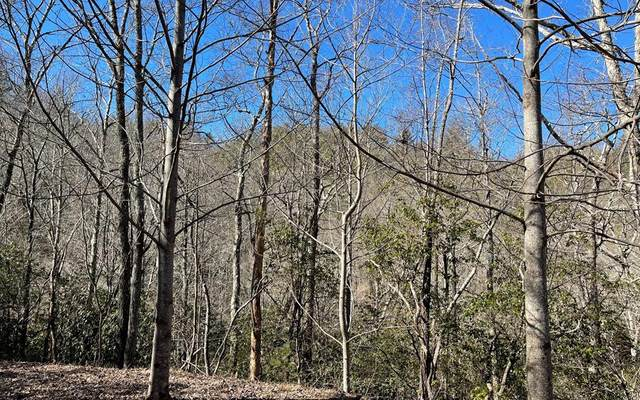 Lot 30 Soapstone, HIAWASSEE, GA 30546 (MLS #137548) :: Old Town Brokers