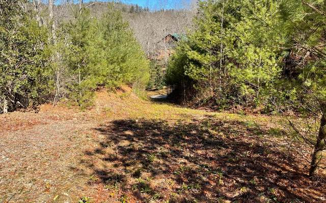 Lot 33 Soapstone, HIAWASSEE, GA 30546 (MLS #137551) :: Old Town Brokers
