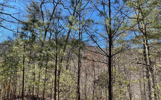 Lot 34 Soapstone, HIAWASSEE, GA 30546 (MLS #137561) :: Old Town Brokers