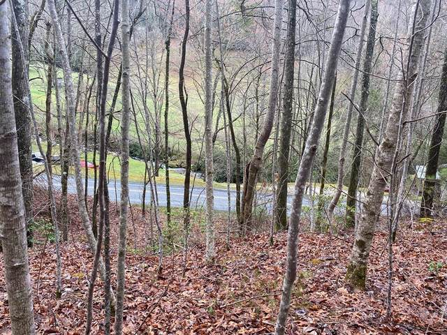 0 Beech Creek, ROBBINSVILLE, NC 28771 (MLS #137564) :: Old Town Brokers