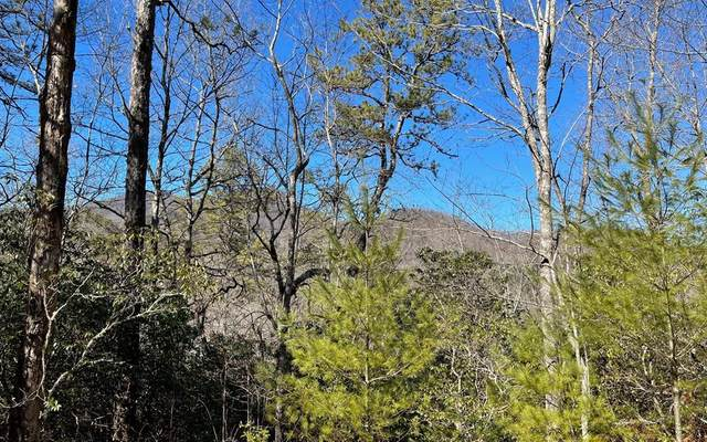 Lot 36 Soapstone, HIAWASSEE, GA 30546 (MLS #137657) :: Old Town Brokers