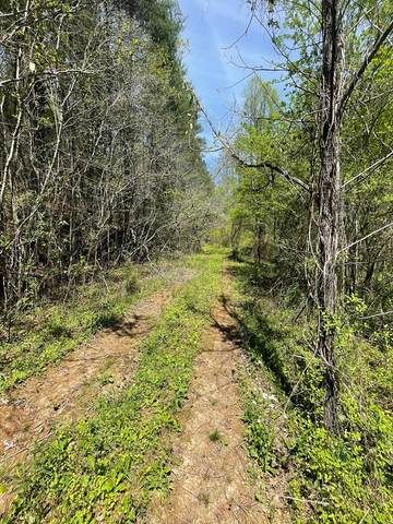3614 Morrow Road, MURPHY, NC 28906 (MLS #137691) :: Old Town Brokers
