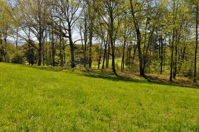 Lot 5 Chatuge Shores Circle, HAYESVILLE, NC 28904 (MLS #137733) :: Old Town Brokers