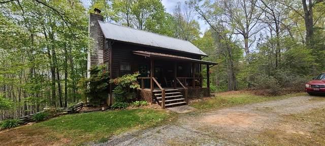 481 Mull Drive, MINERAL BLUFF, GA 30559 (MLS #137741) :: Old Town Brokers