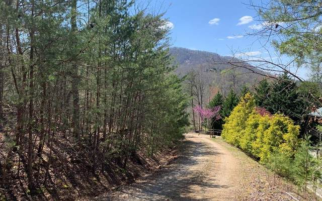 Lots Cherry Mtn, HAYESVILLE, NC 28904 (MLS #138011) :: Old Town Brokers