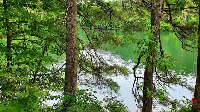 00 Piney Wood Trail, ROBBINSVILLE, NC 28771 (MLS #138124) :: Old Town Brokers