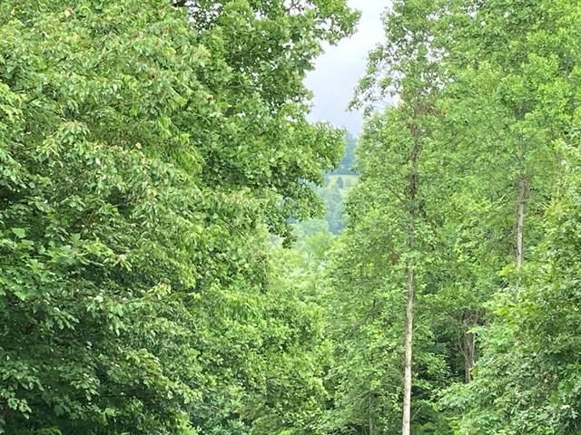 24 Windy Ridge, HAYESVILLE, NC 28901 (MLS #138182) :: Old Town Brokers