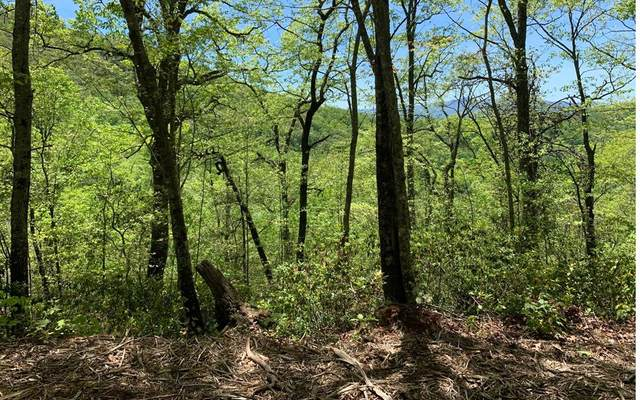 Lot 22B Winchester Cove, HAYESVILLE, NC 28904 (MLS #138202) :: Old Town Brokers
