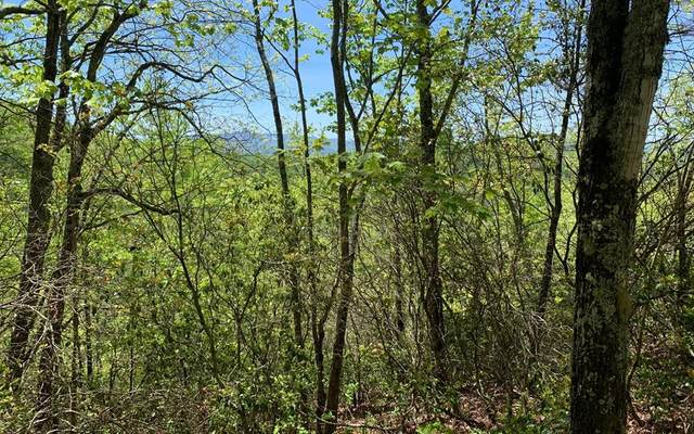 Lot 23A Winchester Cove, HAYESVILLE, NC 28904 (MLS #138203) :: Old Town Brokers
