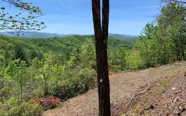 Lot 23B Winchester Cove, HAYESVILLE, NC 28904 (MLS #138204) :: Old Town Brokers