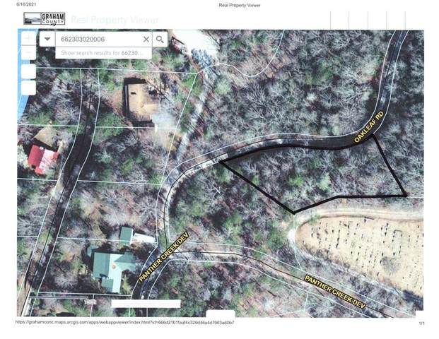 6 Oakleaf Rd, ROBBINSVILLE, NC 28771 (MLS #138233) :: Old Town Brokers