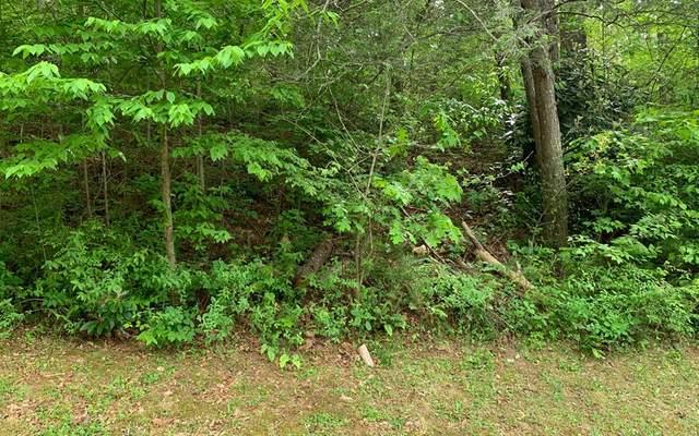 Lot 38 Rivendell, HIAWASSEE, GA 30546 (MLS #138243) :: Old Town Brokers