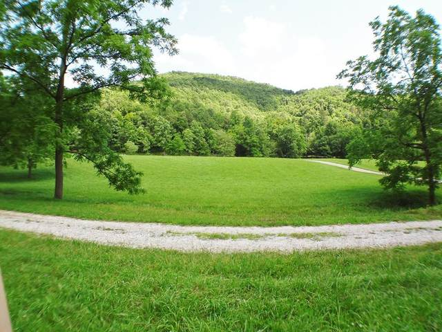 Lot #10 Stonebrook Heights, FRANKLIN, NC 28734 (MLS #138273) :: Old Town Brokers
