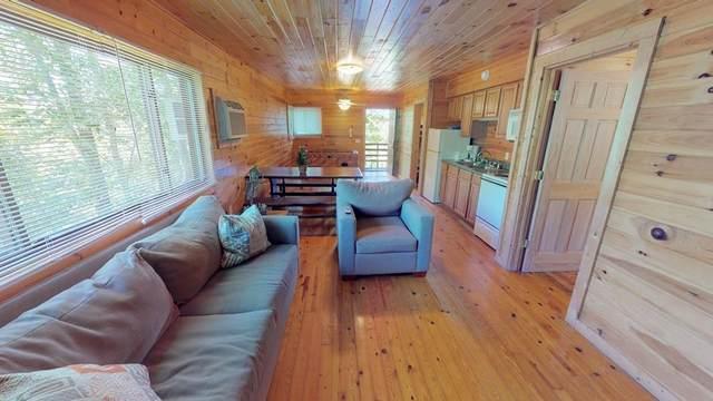 295 Blue Ridge Pkwy, BRYSON CITY, NC 28713 (MLS #138451) :: Old Town Brokers