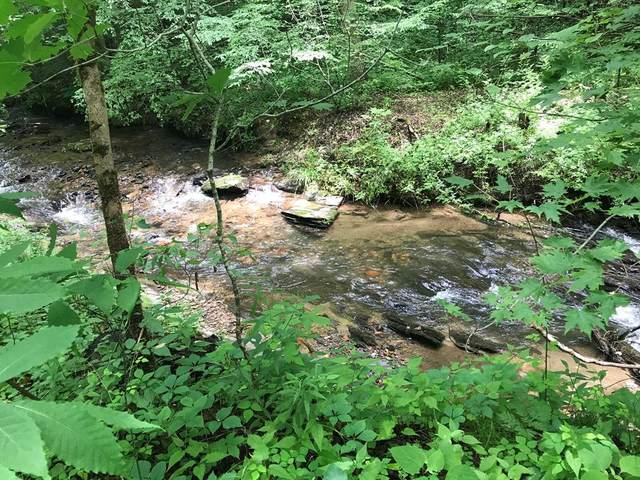 100 East Mill Creek, ROBBINSVILLE, NC 28771 (MLS #138465) :: Old Town Brokers