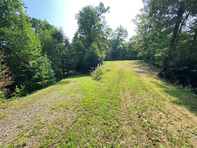 00 Over Silo Ridge, MARBLE, NC 28905 (MLS #138566) :: Old Town Brokers