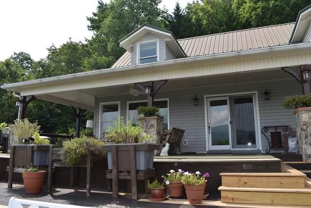 3023 Bear Lane, HIAWASSEE, GA 30546 (MLS #138595) :: Old Town Brokers