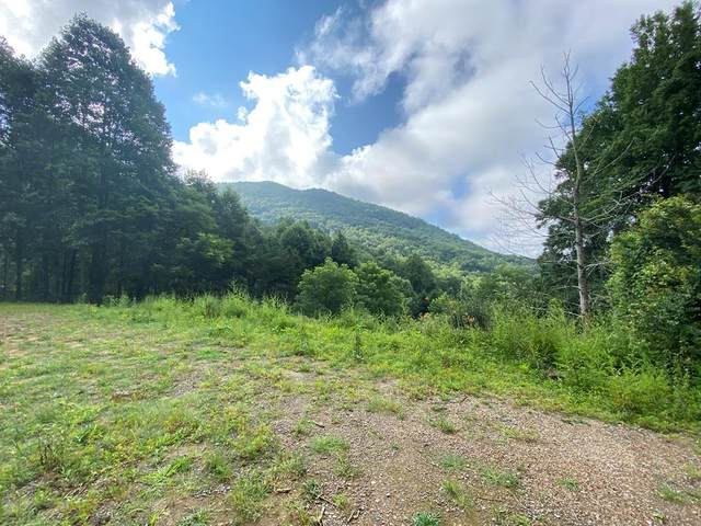 0 Hannah Mountain Road, NONE, NC 28763 (MLS #138638) :: Old Town Brokers