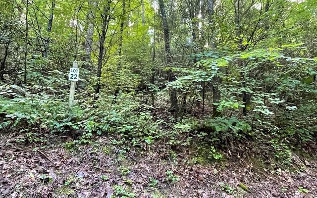 Lot 22 Highland Falls Preserve, BLAIRSVILLE, GA 30512 (MLS #138769) :: Old Town Brokers