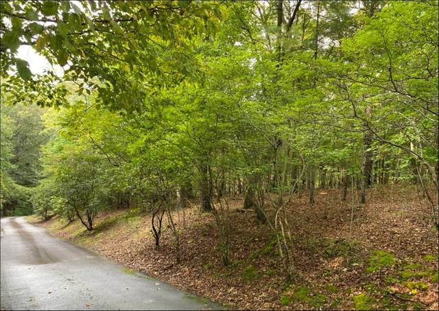 000 Harshaw Rd, MURPHY, NC 28906 (MLS #138847) :: Old Town Brokers