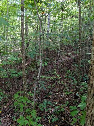 TBD Knob Hill Rd., MARBLE, NC 28905 (MLS #138906) :: Old Town Brokers