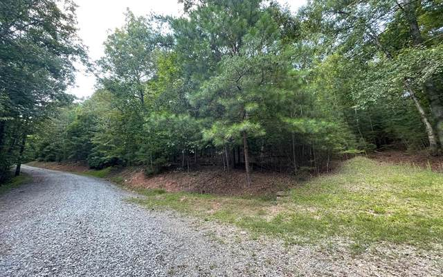 Tr 5A Willow Ridge, HAYESVILLE, NC 28904 (MLS #138998) :: Old Town Brokers