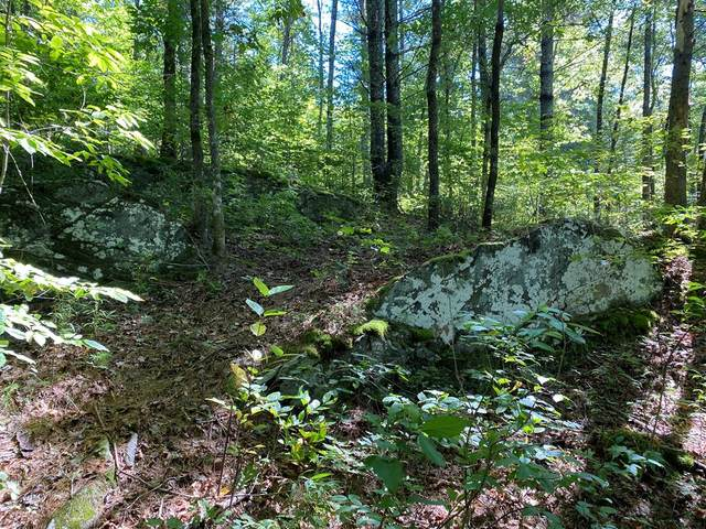 Lot 38 Trillium Heights Dr, HAYESVILLE, NC 28904 (MLS #139047) :: Old Town Brokers