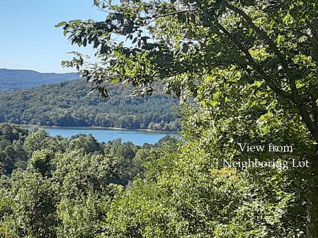 Lot 15 Eagles View Road, HAYESVILLE, NC 28904 (MLS #139066) :: Old Town Brokers