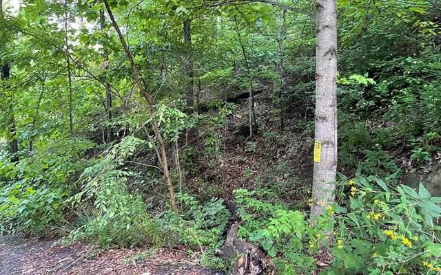 3022 Jump Off Ridge, HIAWASSEE, GA 30546 (MLS #139122) :: Old Town Brokers