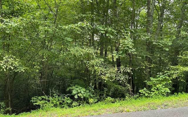 Lot 7 Bear Trail, HIAWASSEE, GA 30546 (MLS #139133) :: Old Town Brokers
