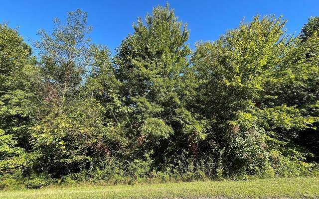 Lot 108 Eagles View, HAYESVILLE, NC 28904 (MLS #139135) :: Old Town Brokers