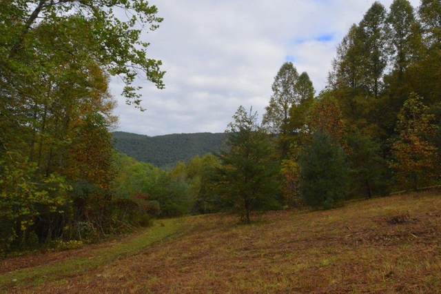 00 Upper Cove Rd., ROBBINSVILLE, NC 28771 (MLS #139163) :: Old Town Brokers