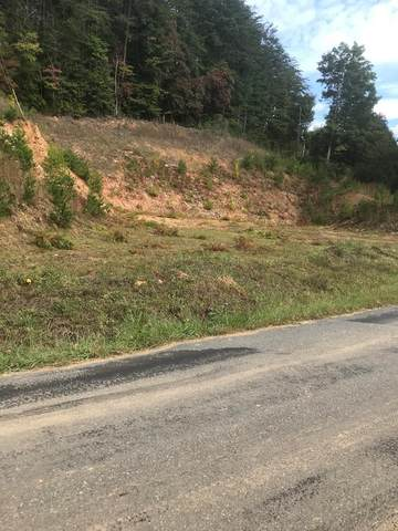 1263 Old Tallulah Rd, ROBBINSVILLE, NC 28771 (MLS #139171) :: Old Town Brokers