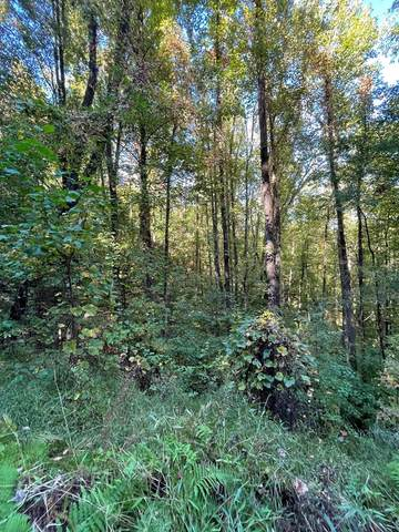 Lot 21 Cabin Cove, HAYESVILLE, NC 28904 (MLS #139237) :: Old Town Brokers