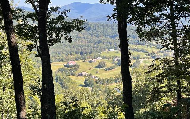 Lot 11J Mountain Harbour, HAYESVILLE, NC 28904 (MLS #139240) :: Old Town Brokers