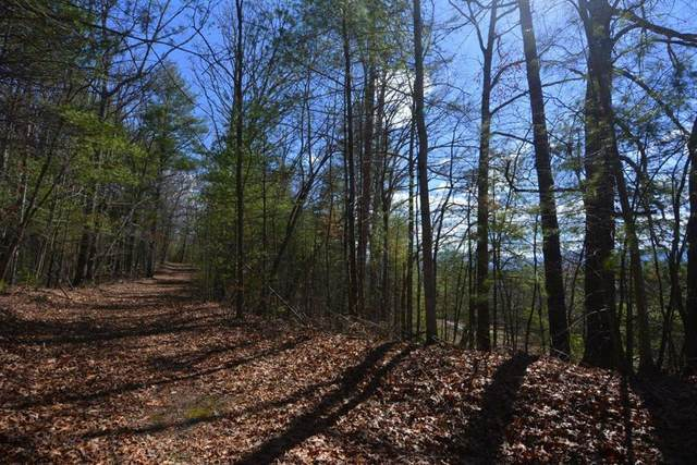 00 Dogwood Trail, ROBBINSVILLE, NC 28771 (MLS #125738) :: Old Town Brokers