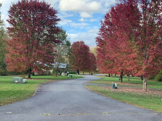 Lot 8 Lazy Bear Trail, ANDREWS, NC 28901 (MLS #134215) :: Old Town Brokers