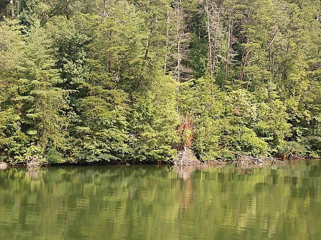 Lot 8 Lakeside Terrace, ROBBINSVILLE, NC 28771 (MLS #134698) :: Old Town Brokers