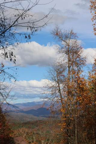 Lot 13 Point Outlook Drive, MURPHY, NC 28906 (MLS #136523) :: Old Town Brokers