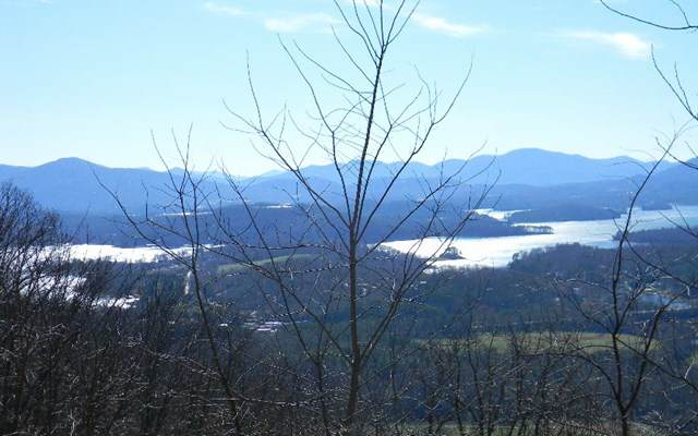 Lot 60M Mountain Harbour, HAYESVILLE, NC 28904 (MLS #127413) :: Old Town Brokers
