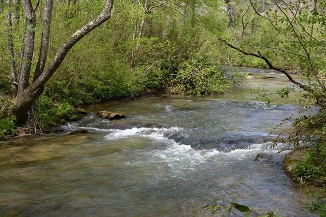 1 Persimmon Creek Estates - Photo 1