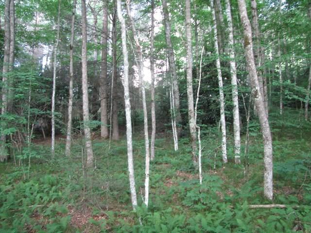 00 Wilderness Way, HAYESVILLE, NC 28904 (MLS #127586) :: Old Town Brokers