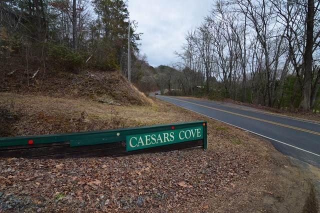 Lot 11A Caesars Cove Rd - Photo 1