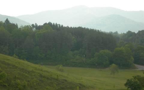 14B Saddle Ridge Farms - Photo 1