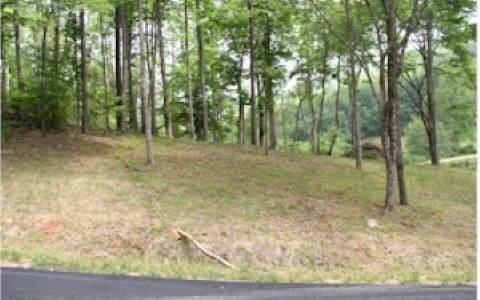 Lot 11 Oak Ridge South - Photo 1