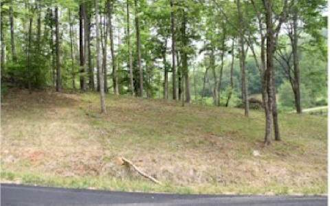 Lot 13 Oak Ridge South - Photo 1