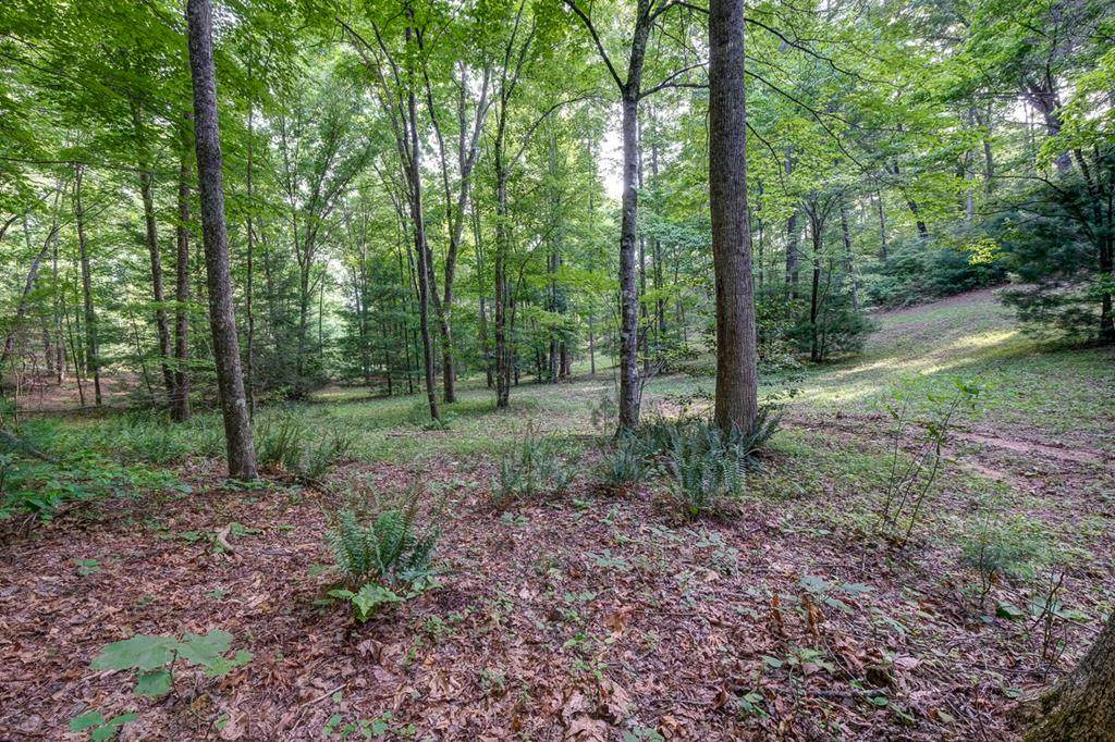 Lot 4 Skyland Trail - Photo 1